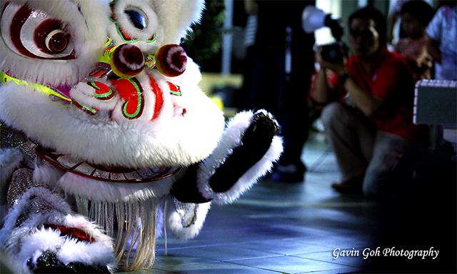 lion_dance1