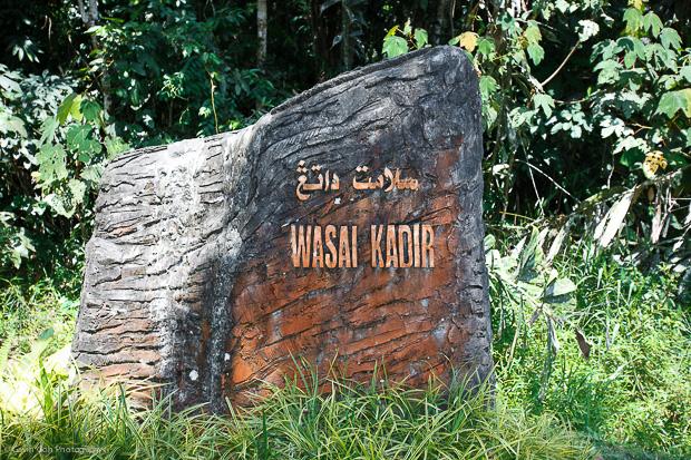 Wasai Kadir-8